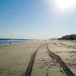 Beach showing car tire tracks