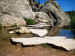 custer-state-park-2